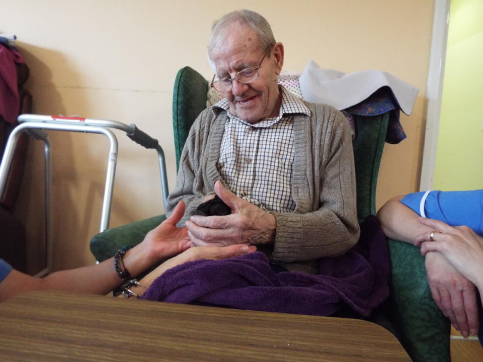 Hen therapy at Quenby Residential Home